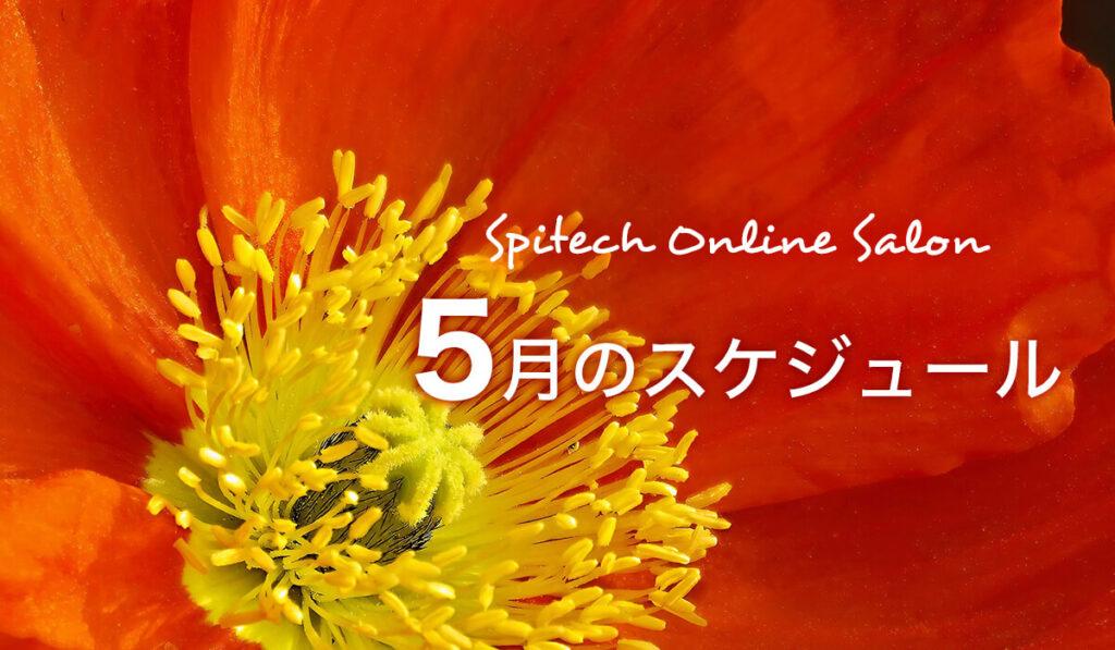 5月のスケジュール(全国イベント・オンラインサロン)