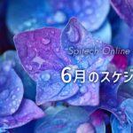 スピテック6月のスケジュール(全国イベント・オンラインサロン)
