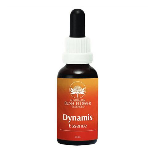 ダイナミス[Dynamis]『活力』
